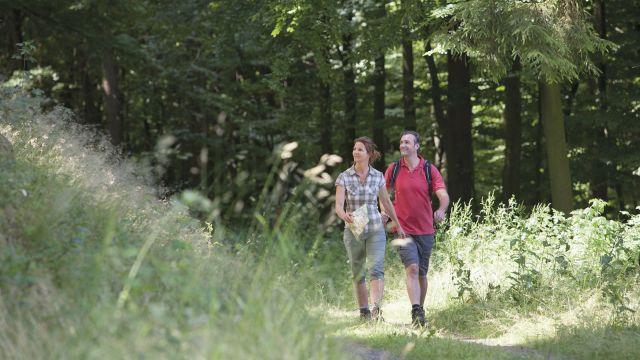 Wanderwochen mit Familie Deimann - Kurzurlaub Hochsauerland
