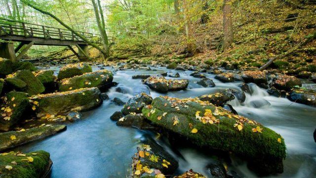 Deynique-Wanderpaket 2 - Kurzurlaub Westerwald