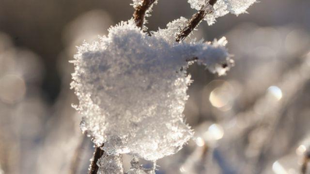 Winter in Parin - Kurzurlaub Mecklenburgische Ostseeküste