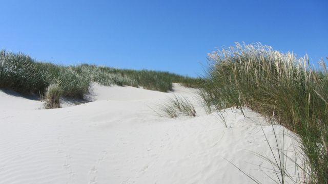 Reiseziele Baltrum - Ostfriesische Inseln