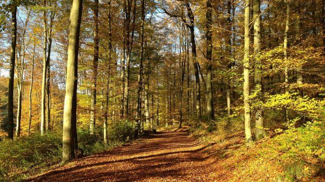 Urlaubsregion Westerwald