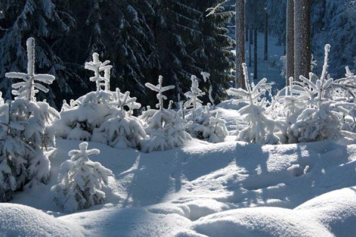 Schneegestöber Oberhof