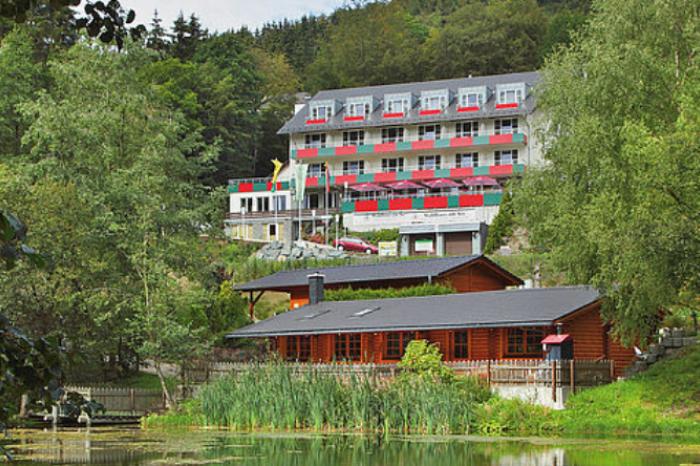 Waldhaus am See, Willingen (Upland), Region Sauerland