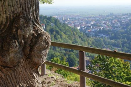 Urlaubsregion Eifel