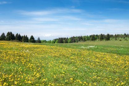 Urlaubsregion Schwäbische Alb