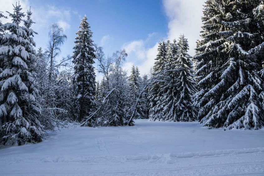 Urlaubsregion Thüringer Wald